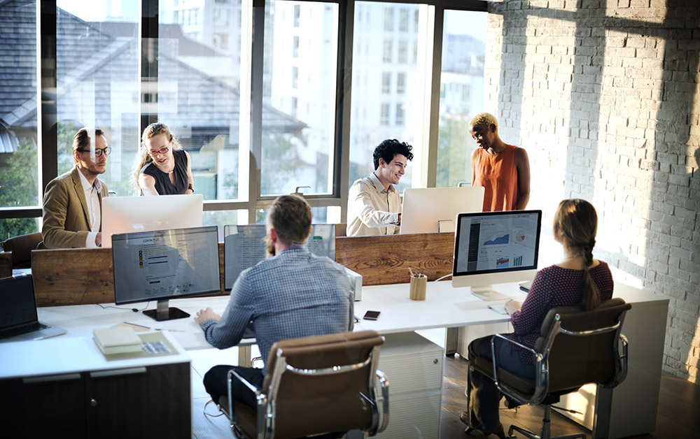 Group of employees work at their desks